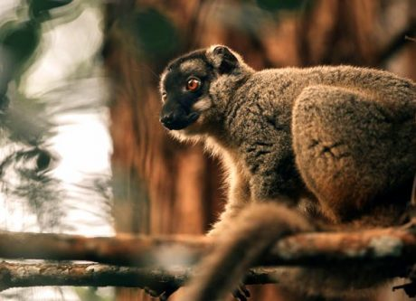 Route nationale 7 et randonnée à Madagascar