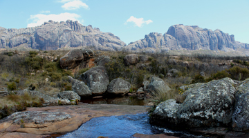 Biodiversité du parc national Andringitra à Madagascar